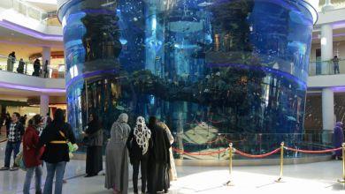 صورة موروكومول يخصص برنامج إستثنائي لزواره في شهر رمضان