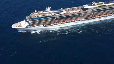 """صورة نجوم الطرب والفن يجتعمون على متن """"Stars On Board"""""""