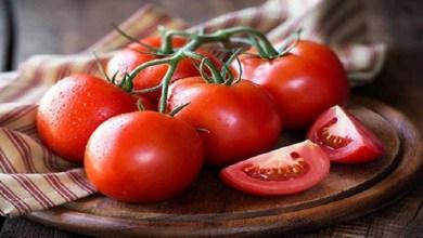 صورة أخصائية تغذية تحذر من تناول الطماطم