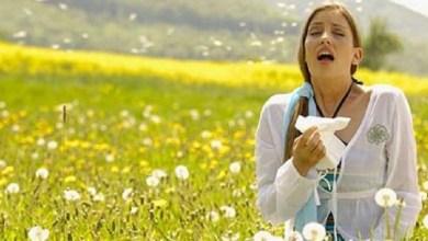 صورة 3 خطوات منزلية لعلاج حساسية الربيع