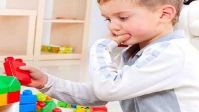 صورة استغلي فترة الحجر الصحي وعززي ذاكرة طفلك عبر نظام غذائي منتظم