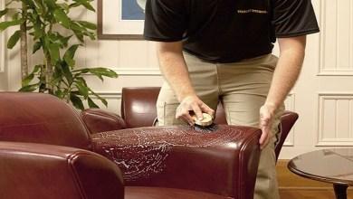صورة الطريقة المثالية لتنظيف الكراسي الجلدية