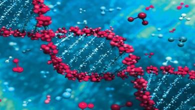 صورة ما هي الأمراض الوراثية الأكثر شيوعا؟