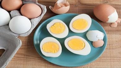صورة دراسة.. البيض يزيد من خطر وفاة الشباب