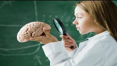 صورة الإفراط في الأكل وتأثيره على صحة الدماغ