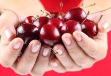 صورة فوائد صحية غير متوقعة لفاكهة الكرز
