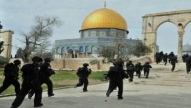 صورة مشاهير العالم العربي يتضامنون مع الشعب الفلسطيني
