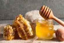 صورة يحمي من الشيخوخة.. تعرفي على فوائد العسل للبشرة الذهنية
