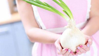 صورة هل يخلص البصل الجسم من السموم  وما فوائده على الصحة؟