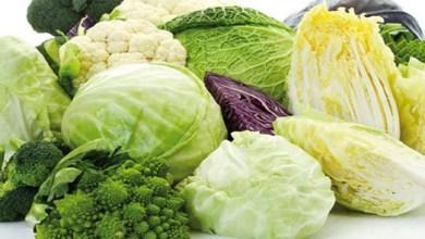 صورة أطعمة تعوض نقص الكالسيوم في الجسم