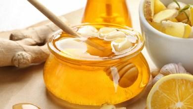 صورة منها العسل والبيض.. مكونات طبيعية تعالج تشقق الأظافر