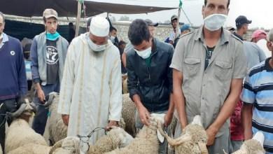 """صورة بمناسبة """"العيد"""".. تحذيرات مهمة من ازدحام الأسواق"""