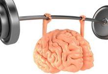 صورة لمواجهة مرض الزهايمر.. إليكم أفضل الأطعمة والمشروبات التي تساعد على تنشيط الذاكرة