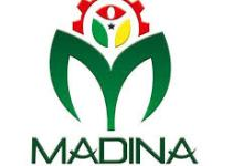 Madina Institute of Science and Technology Admission Form