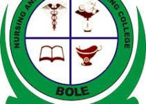 Navorongo community Heath Nurses Training College Admission Form