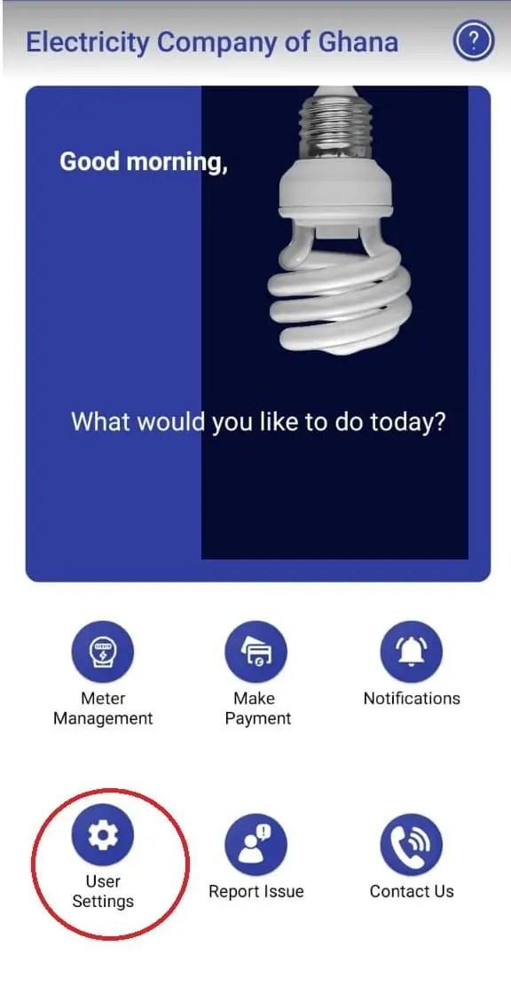 MTN Momo and ECG Power App