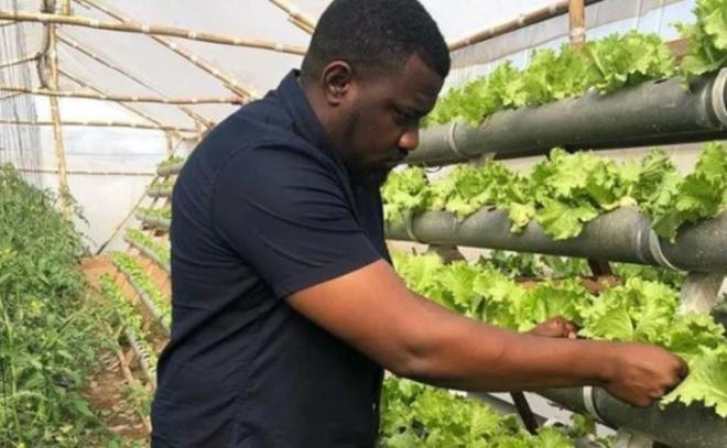 Agriculture is the answer to most of Ghana's problems – John Dumelo