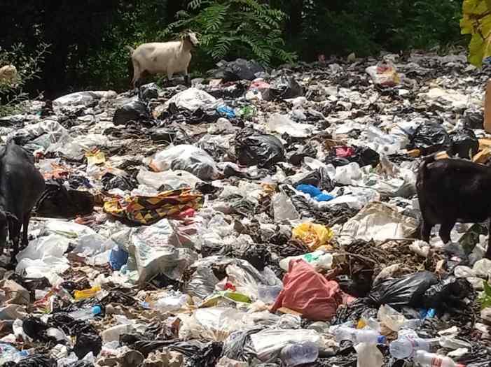 Sanitation Ministry Begins Evacuation Of Illegal Dumpsites In Ashanti Region