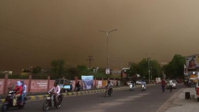 DUST STORM: Meteo Agency warns of rise in sore throat, cough and sneezing in the north