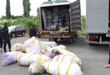 Volta Reg, Police Command Intercepted in GH¢5 million Worth of 'Cannabis' In