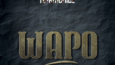 Harmonize – Wapo