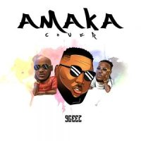 Download 9Geez - Amaka Cover (Freestyle) || @9geez