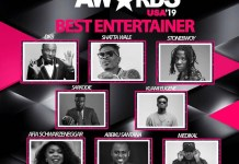 Full List of Ghana Entertainment Awards USA 2019