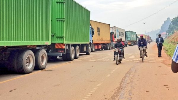 Nigeria Border closure: Govt likely to compensate affected businesses – Dep. Min