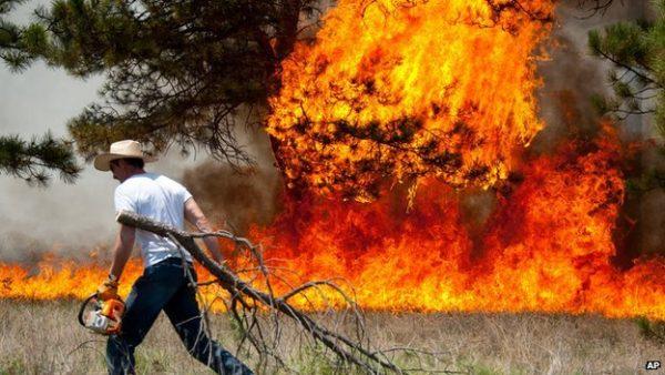 Bushfire burns 29 ECG poles in Sogakope, Keta