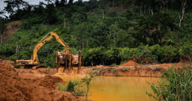 The complicated fight to curb illegal mining in Ghana