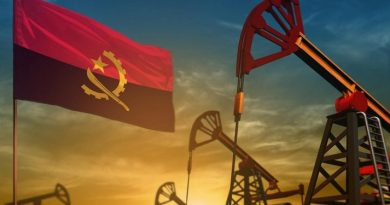 Angola's ANPG moves to make 2020 bid round more transparent