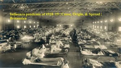 Diseases pandemic