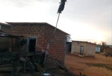 Strange Tree Emerges At Breman In The Central Region (Photo)