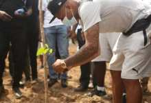 """Black Stars take part in the maiden """"Green Ghana Day"""""""