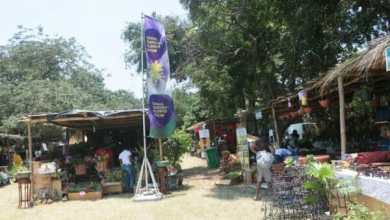 Photo of Ghana Garden, Flower show goes virtual