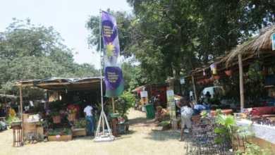 Photo of Ghana Garden, Flower show goes virtual