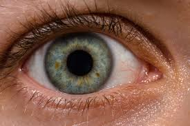 Photo of Artificial Cornea Developed By Israeli Company, Successfully Implanted In Blind Man's Eye