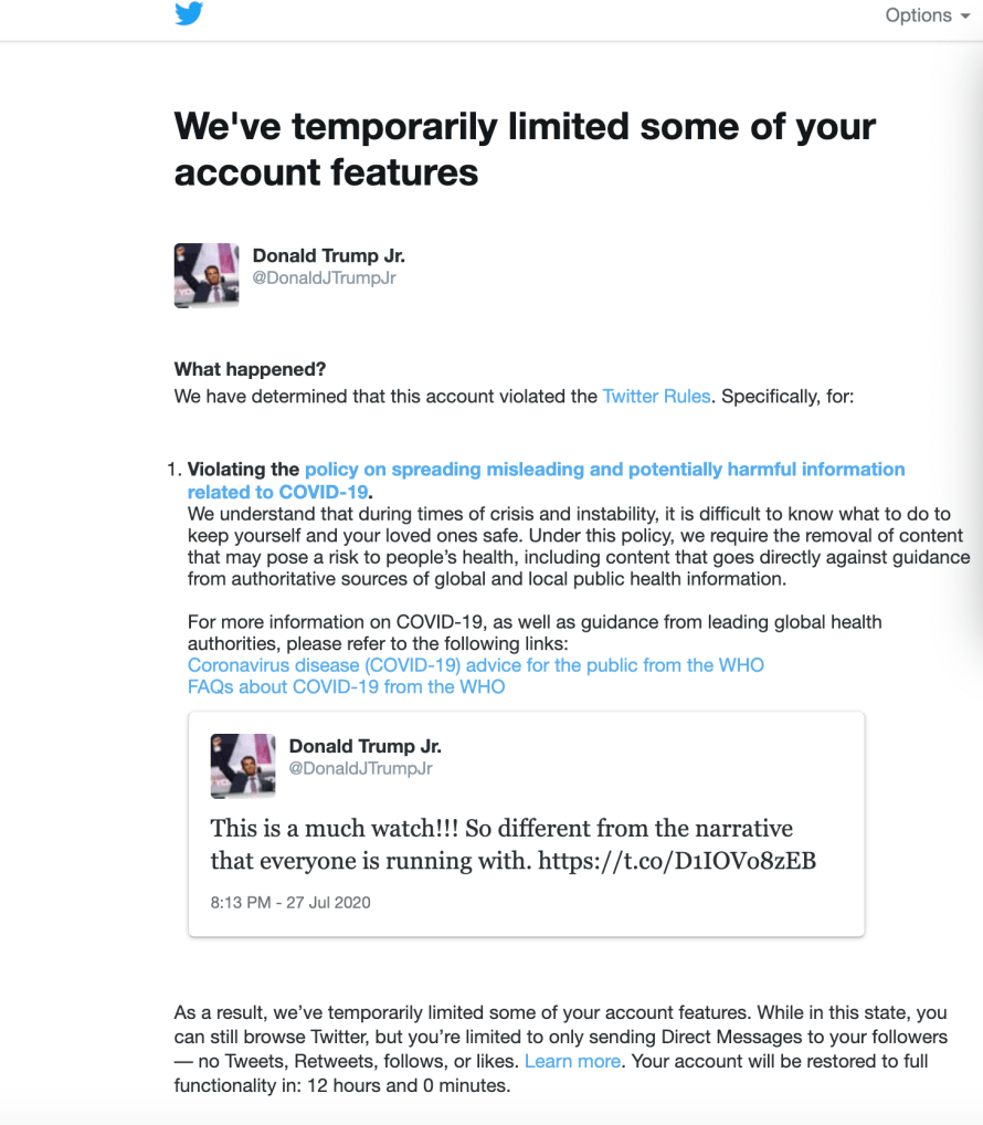 Twitter suspended temporarily Donald Trump Jnr's Account