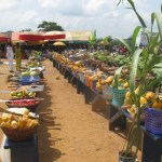 Ashanti region blacklisted for defaulting in payment of agricultural credit facility