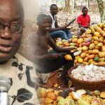 Farmers urge Ghanaians to vote against Akufo-Addo for his mischief and disrespect against them on fa...