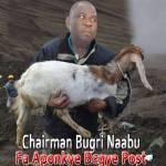 Akufo-Addo intervenes in Bugri Naabu, Otiko 'feud'