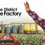 NPP Gov't 'Stealing' NDC Era Pineapple Factory