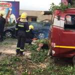 Huge tree falls on car near KFC causing massive traffic (Video)