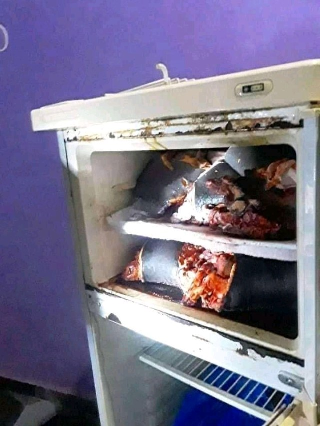 Man arrested; two human heads found in his refrigerator [Video+Details]
