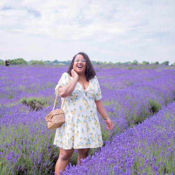 A Trip to Mayfield Lavender Farm