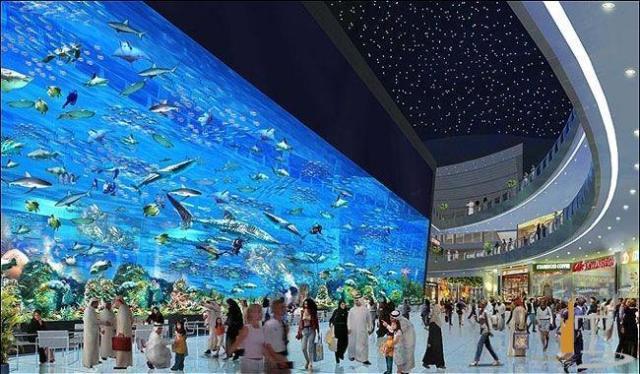 Один из самых крупных аквариумов мира