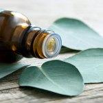 Натуральные эфирные масла – лекарства, созданные природой