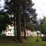 Бэйле-Тушнад. Отель O3Zone. Румыния. Мой летний отдых.