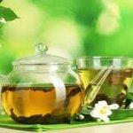 Укрепляем кости зеленым чаем.