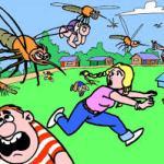 """Чего """"бояться"""" комары и мошки."""